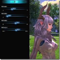 TeraCharaMake_027